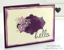 Stampin' Up! UK Demonstrator Pootles - Hey There Eleanor and Everything Petite Petals...